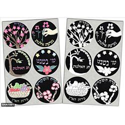 Jewish Color & Rub Stickers Tu B' Shvat