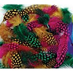 CREATIVITY STREET, SPOTTED FEATHERS, 7 GRAMS ASSORTED COLORS