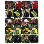Eureka Rainforest Creatures Theme Stickers (655018)