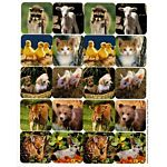 Eureka Baby Animals Theme Stickers (655027)