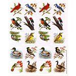 Eureka Birds Theme Stickers (65533)