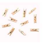 Darice Mini Spring Clothespins - Natural - 1 inch - 50 pieces (9151-08)