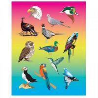 Hygloss Bird Stickers 3 Sheets (1822)