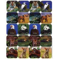 Eureka Endangered Animals Theme Stickers (655025)