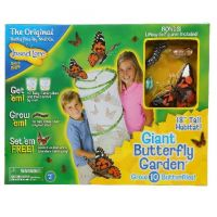 Insect Lore Giant Butterfly Garden Caterpillar to Butterfly Growing Kit
