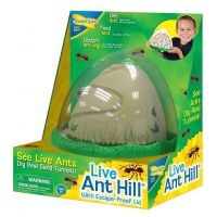 Ant Farm Viewing Habitat - Escape Proof Ant Hill Kit Includes Sand And Activity Book
